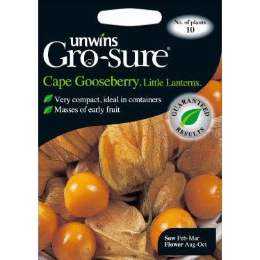 Picture of Unwins Gro-sure® 'Little Lanterns' Cape Gooseberry