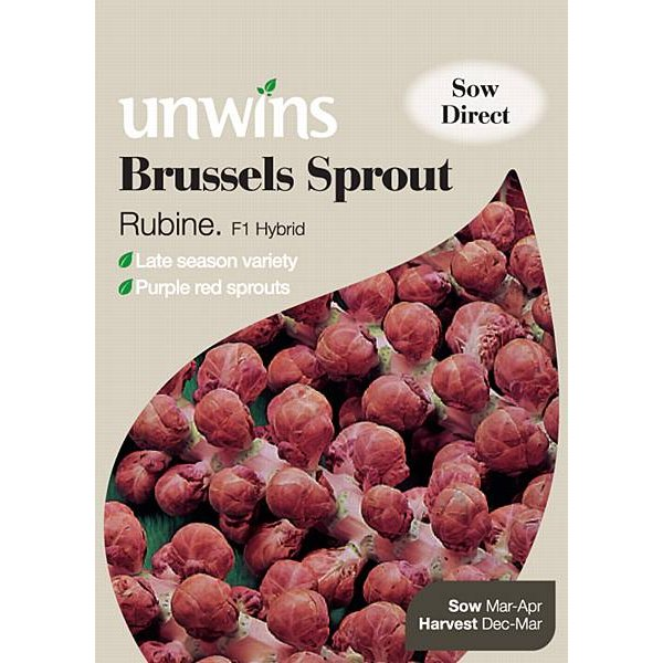 Picture of Unwins 'Rubine' Brussels Sprout Seeds