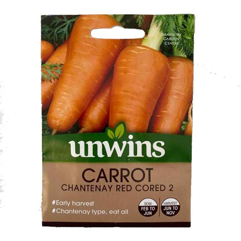 Picture of Unwins 'Chantenay Red Cored 2' Carrot Seeds