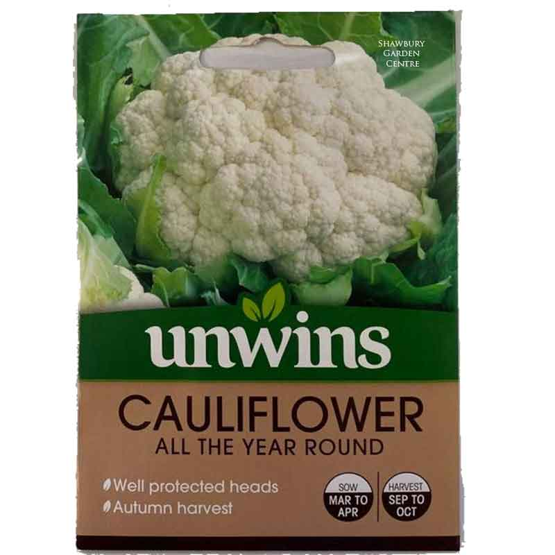 Picture of Unwins CAULIFLOWER All the Year Round Seeds