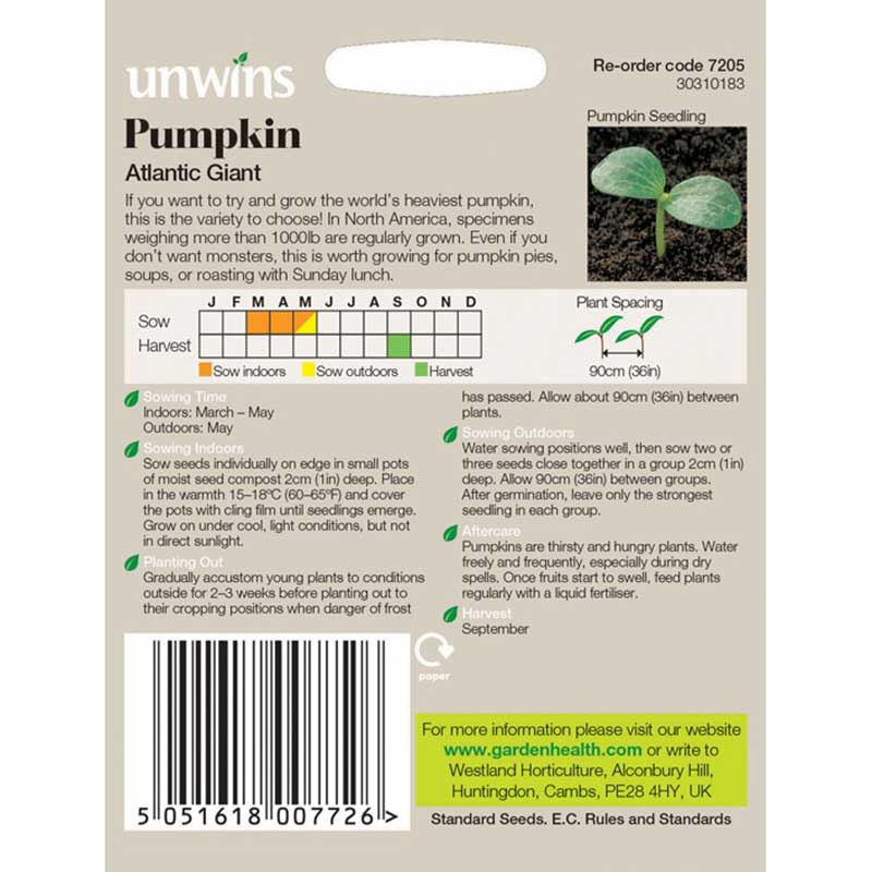 Picture of Unwins 'Atlantic Giant' Pumpkin Seeds