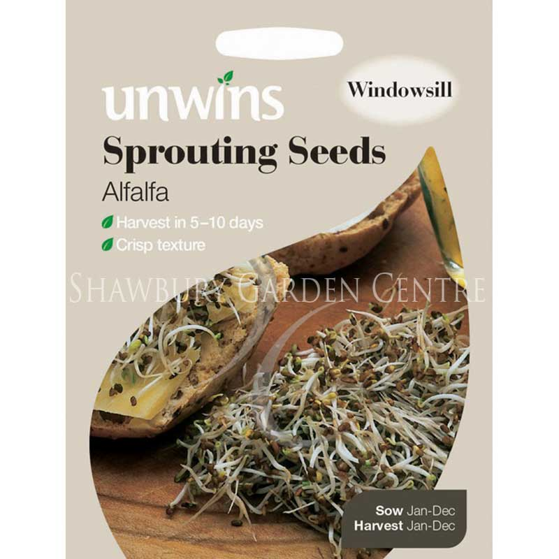 Picture of Unwins SPROUTING SEEDS Alfalfa