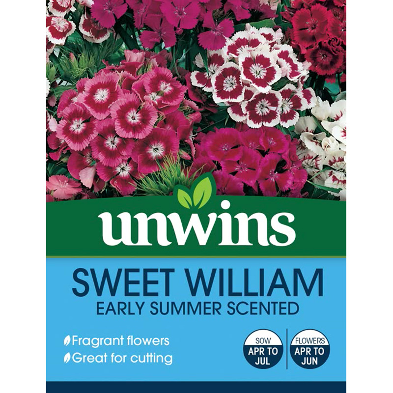 Picture of Unwins Sweet William 'Early Summer Scented' Seeds