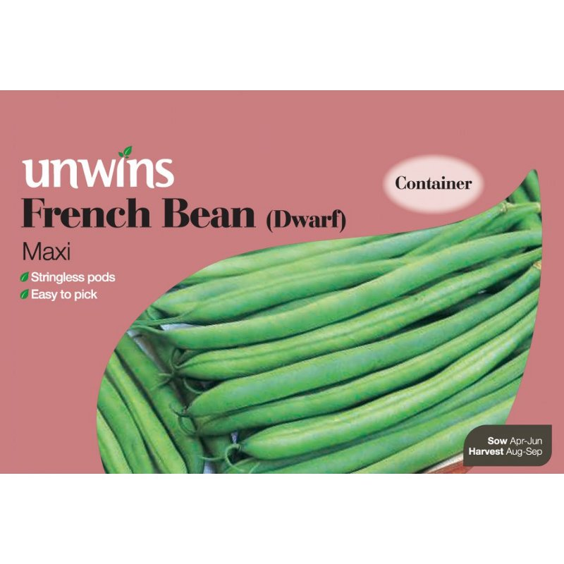Picture of Unwins FRENCH BEAN Maxi (Dwarf) Seeds
