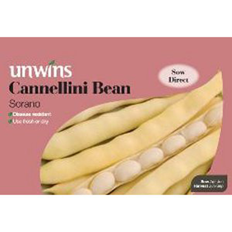 Picture of Unwins 'Sorano' Cannellini Bean Seeds