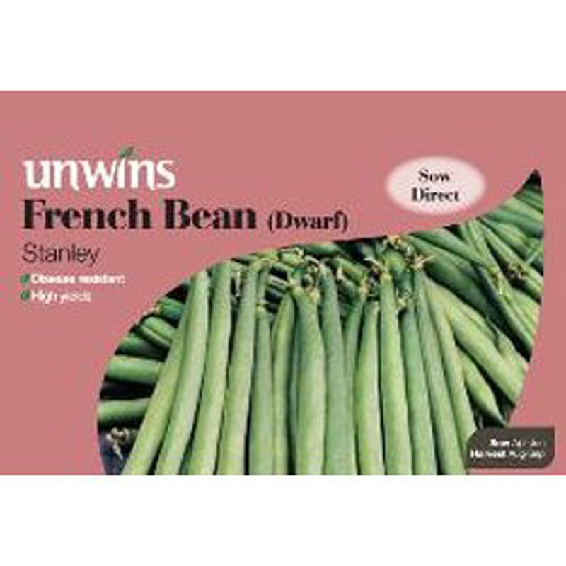 Picture of Unwins 'Stanley' Dwarf French Bean Seeds