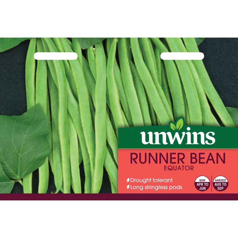 Picture of Unwins Gro-sure® 'Equator' Runner Bean Seeds