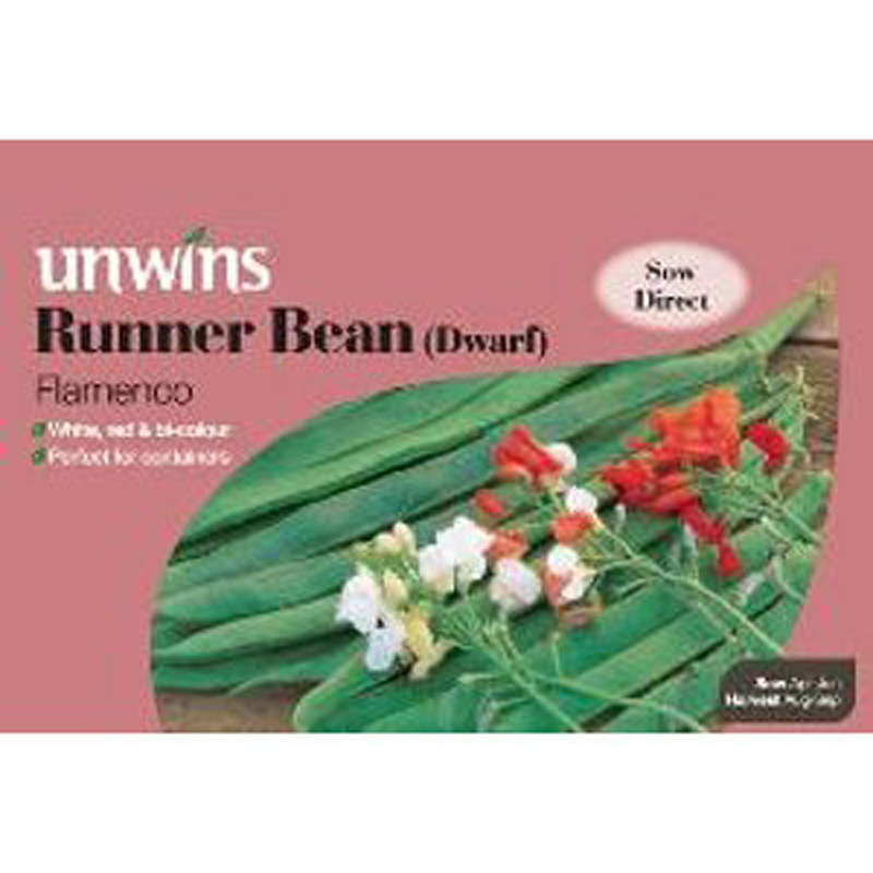 Picture of Unwins 'Flamenco' Dwarf Runner Bean Seeds