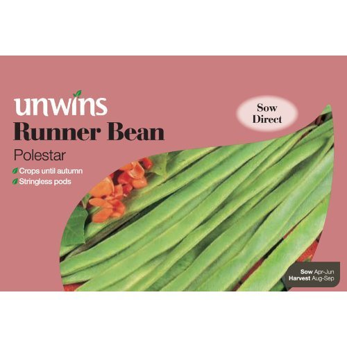 Picture of Unwins 'Polestar' Runner Bean Seeds