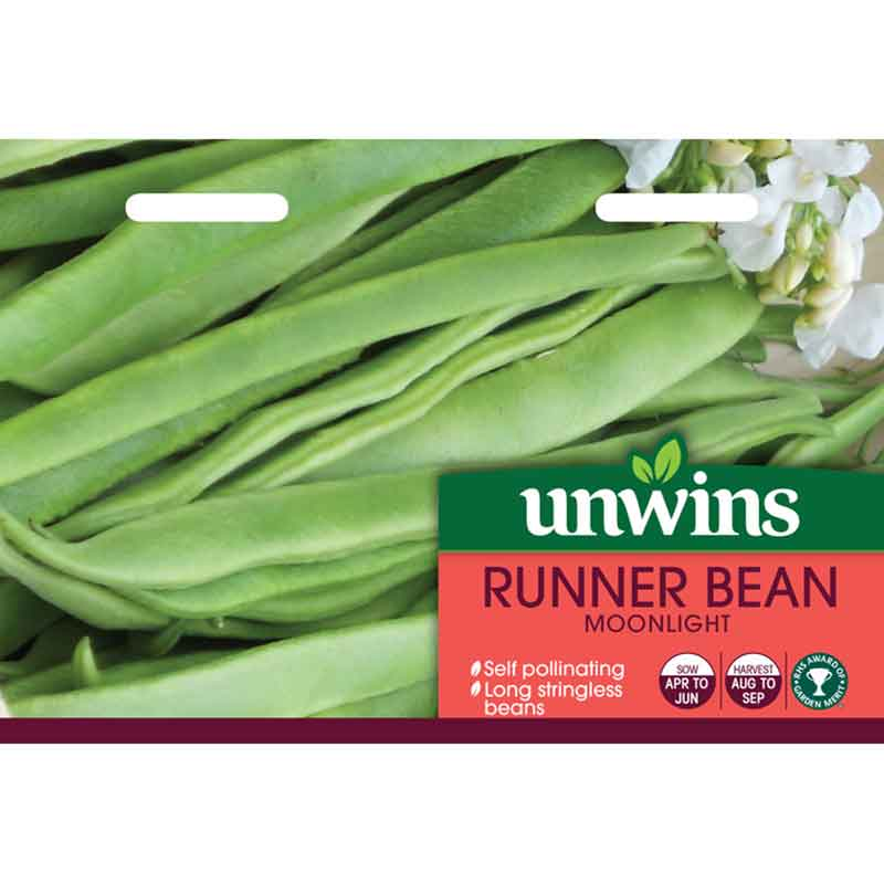 Picture of Unwins Gro-sure® 'Moonlight' Runner Bean Seeds
