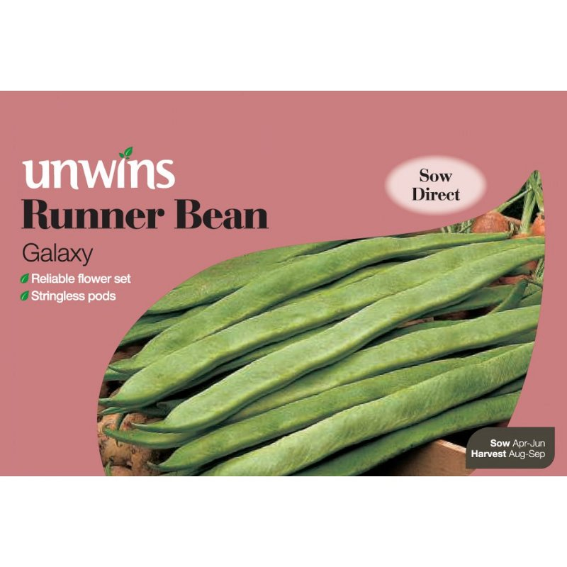 Picture of Unwins 'Galaxy' Runner Bean Seeds