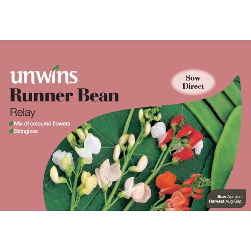 Picture of Unwins 'Relay' Runner Bean Seeds