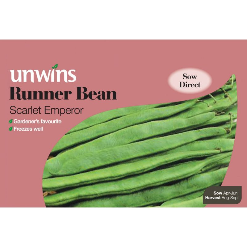 Picture of Unwins 'Scarlet Emperor' Runner Bean Seeds