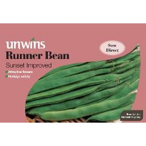 Picture of Unwins 'Sunset Improved' Runner Bean Seeds