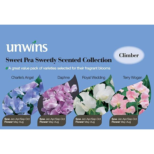Picture of Unwins Sweet Pea Sweetly Scented Collection