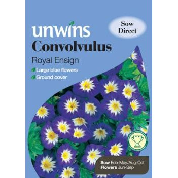 Picture of Unwins 'Royal Ensign' Convolvulus Seeds