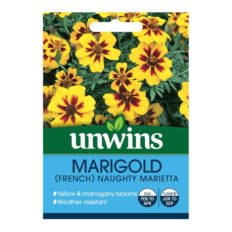 Picture of Unwins 'Naughty Marietta' French Marigold Seeds