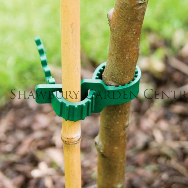 Picture of Strong Rubberised Shrub Ties