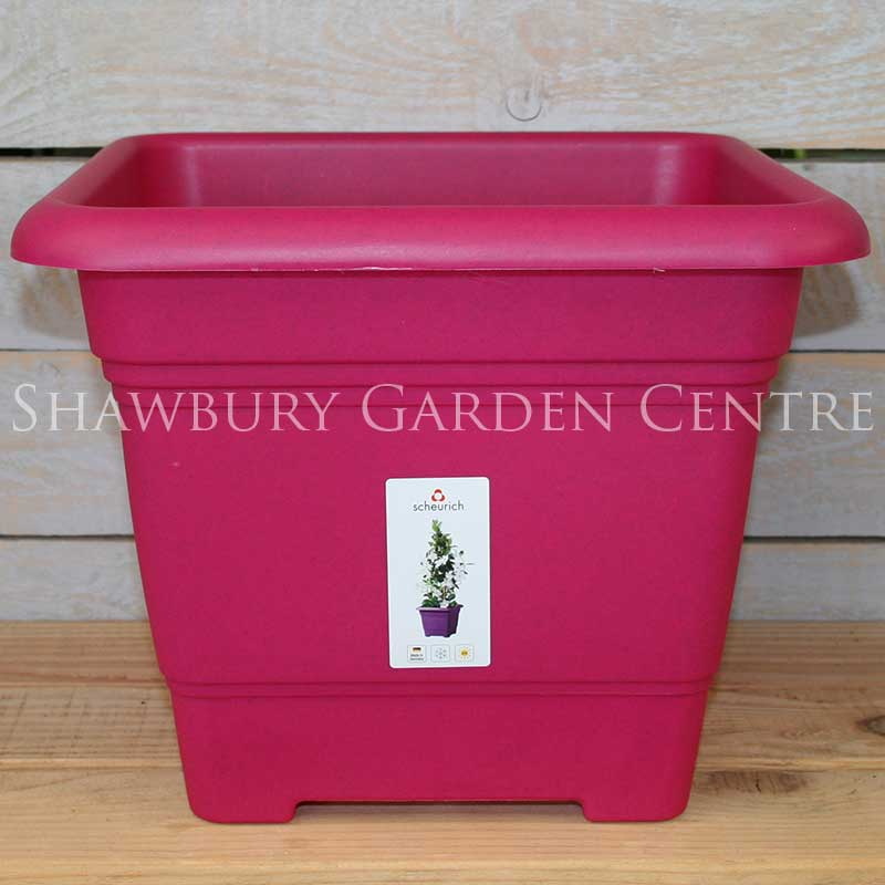Picture of Scheurich Living Ruby Pink Square Plastic Plant Pots