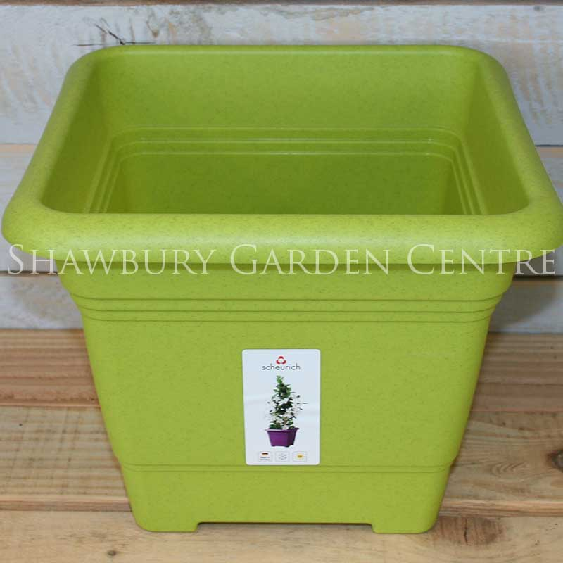 Picture of Scheurich Living Green Square Plastic Plant Pots