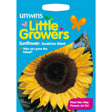 Picture of Unwins Little Growers 'Sunshine Giant' Sunflowers