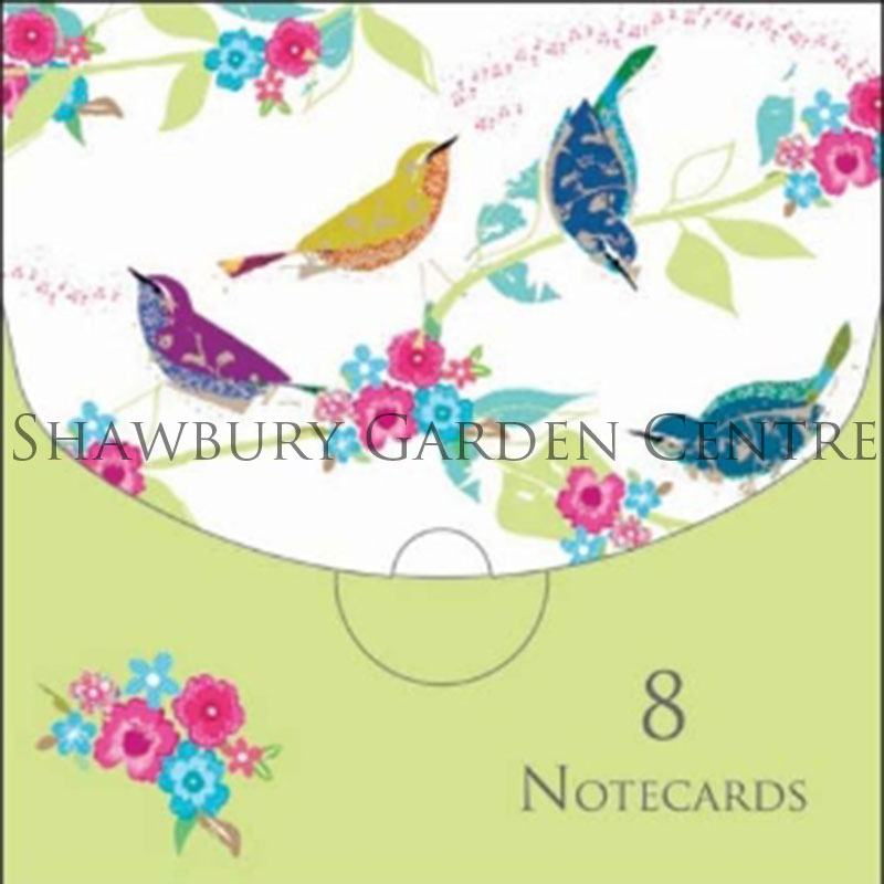 Picture of Woodmansterne 8 Notecards 'Giddy' by Claire Hocking