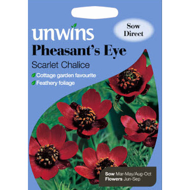 Picture of Unwins 'Scarlet Chalice' Pheasant's Eye Seeds