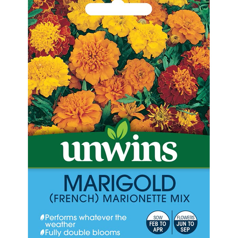 Picture of Unwins 'Marionette Mix' French Marigold Seeds