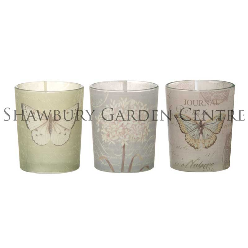 Picture of Parlane Glass Tealight Holder with Butterfly Motif - Set of 3
