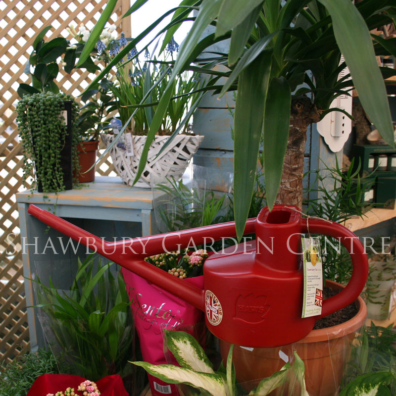 Picture of Haws 2.25 Litre Plastic Conservatory Watering Can
