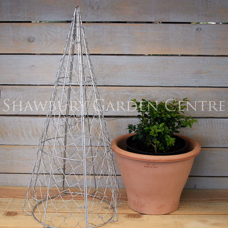 Picture of Burgon & Ball Cone Topiary Frame