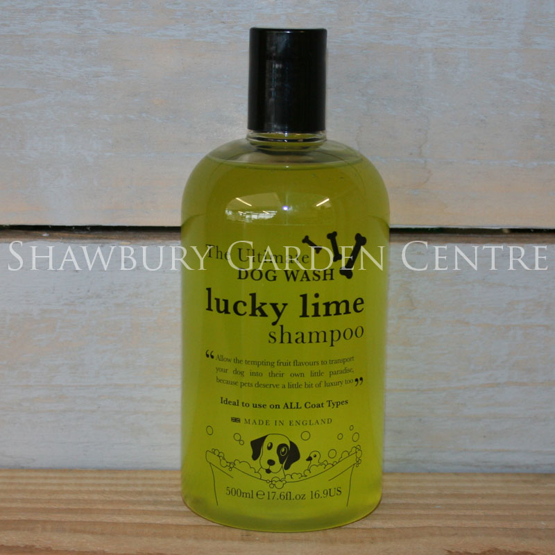 Picture of House of Paws Lucky Lime Dog Shampoo