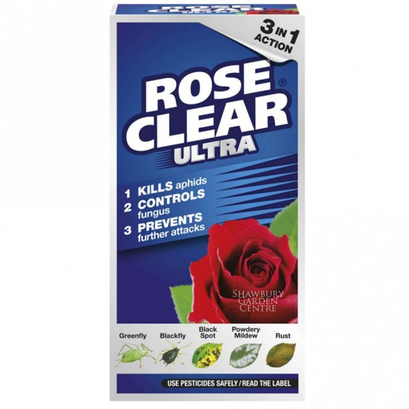 Picture of Rose Clear Ultra