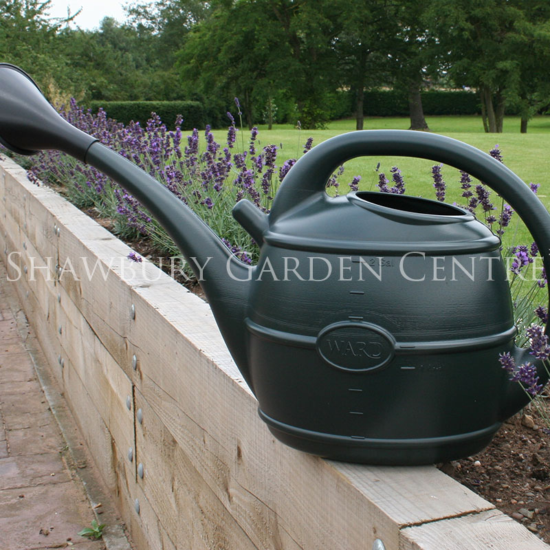 Picture of Ward Plastic Watering Can