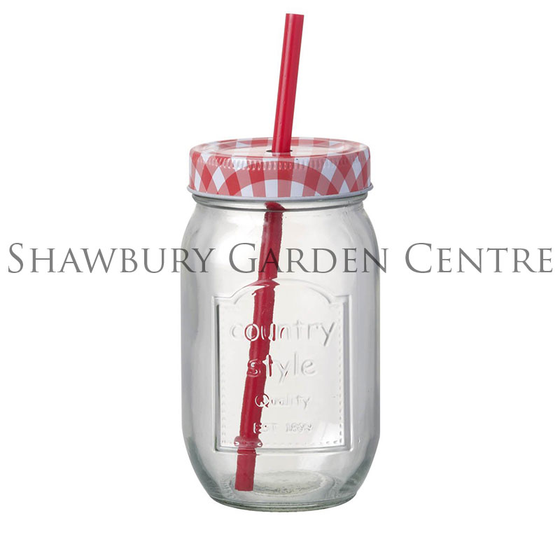 Picture of Parlane Glass Bottle Jar with Red Straw