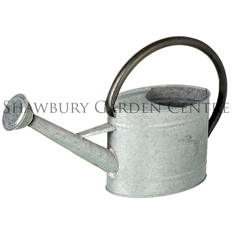 Parlane small zinc watering can for Gardening tools watering