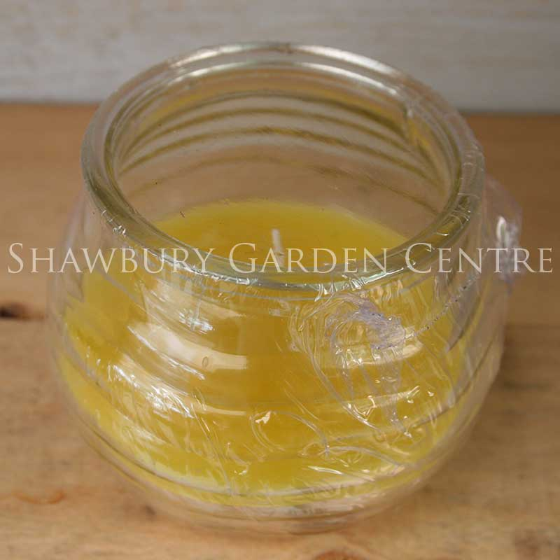 Picture of Citronella Candle in Glass Jar