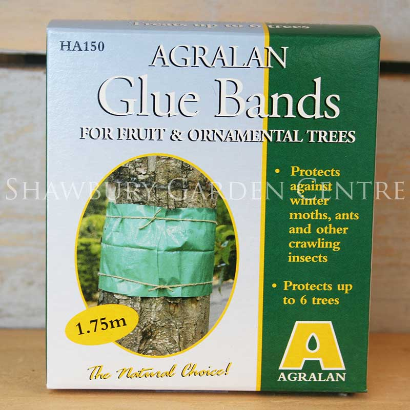 Picture of Agralan Glue Bands for Fruit & Ornamental Trees