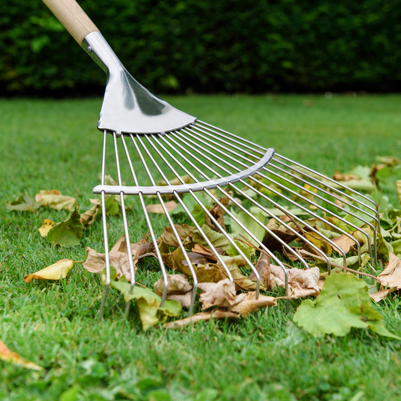 Picture of Garden Rakes