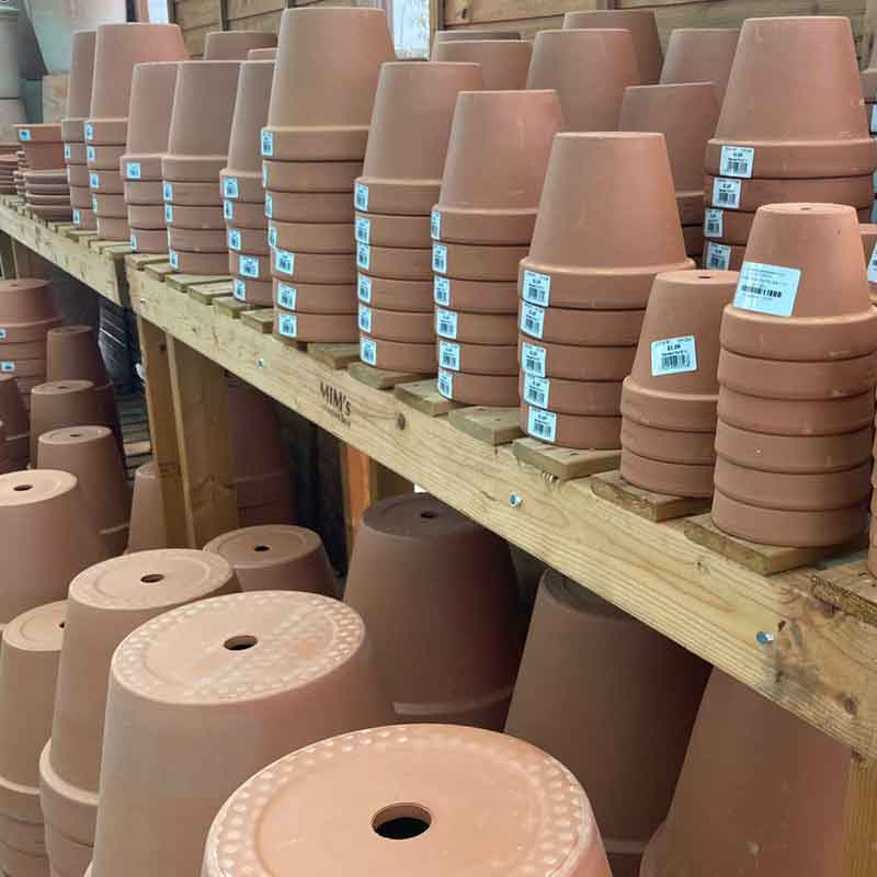 Picture of Terracotta Pots