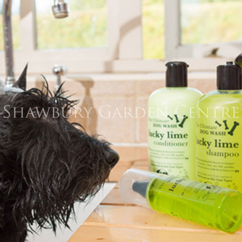 Picture of Pet Grooming Products