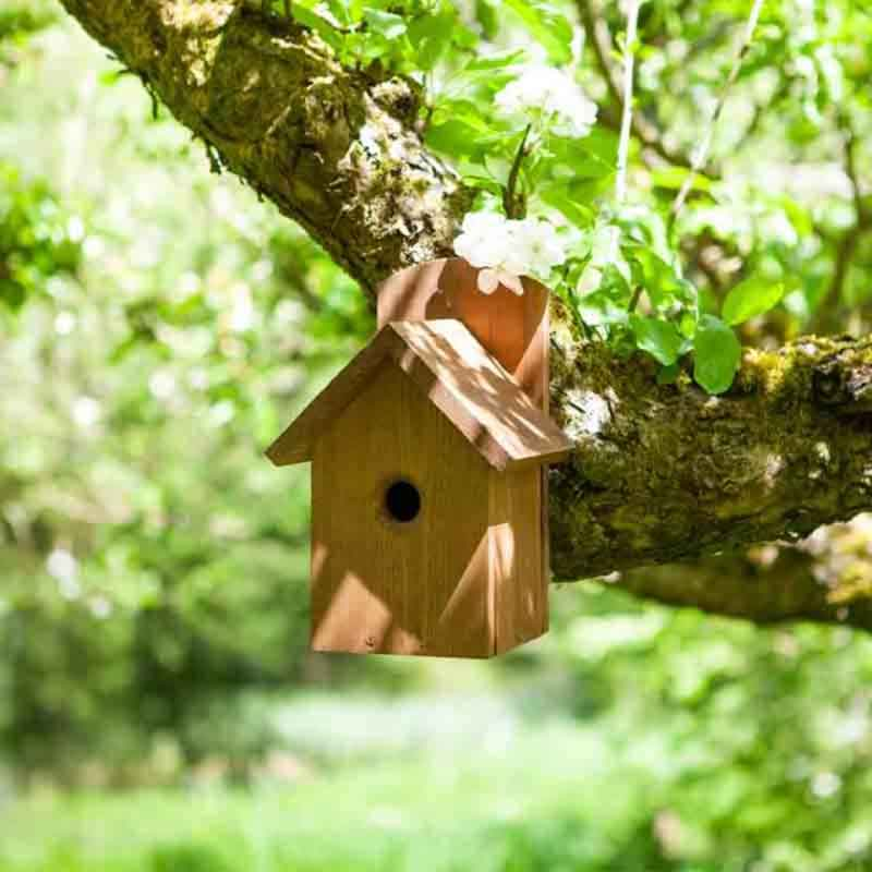 Picture of Bird Tables & Nesting Boxes